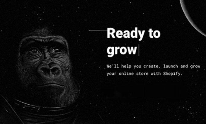 Brave the Skies Clean Website Design