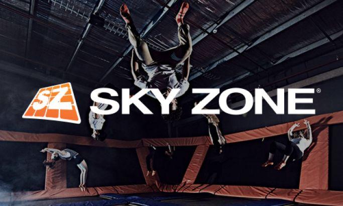 Sky Zone Best Website Design