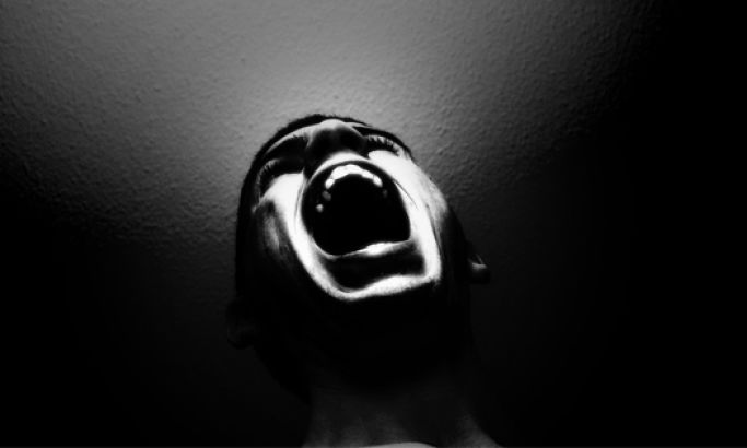 The Stolen Scream