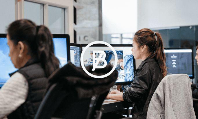 Basic Agency Professional Website Design