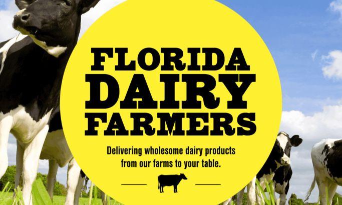 Florida Milk Gorgeous Website Design