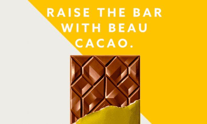 Beau Cacao Amazing Website Design