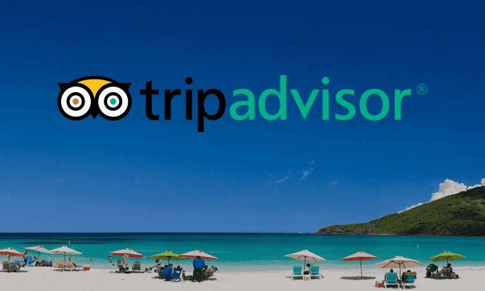 TripAdvisor Clean Website Design