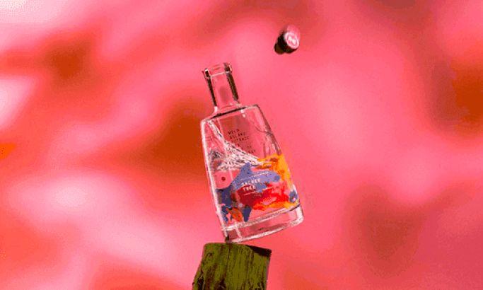 Wild Island Gin's Vibrant Package Design Captures A Creative Aquatic Essence