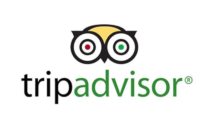 TripAdvisor Logo Design