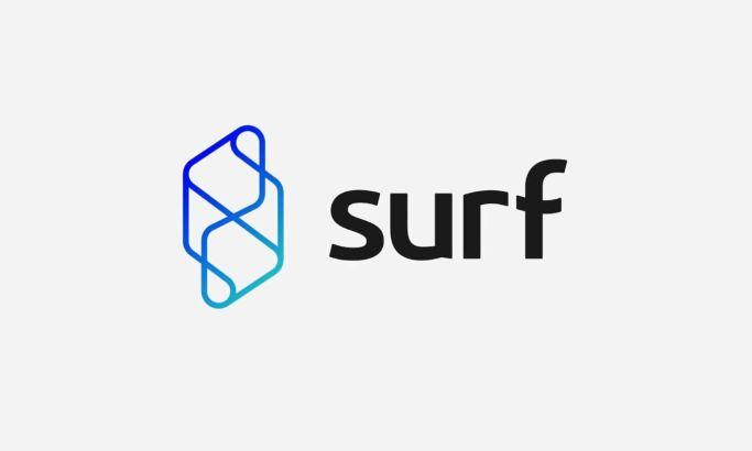 Surf logo design by Twist