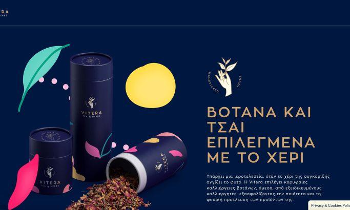 Vitera website design