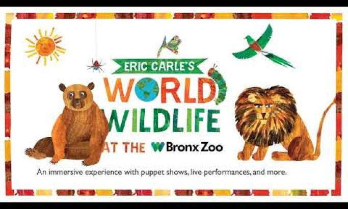 Bronx Zoo Video Design Brings Book Characters To Life For An Immersive AR Experience