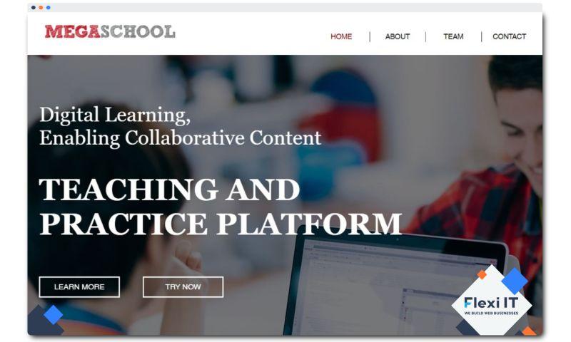 Flexi IT - MegaSchool — Learning Content Management System