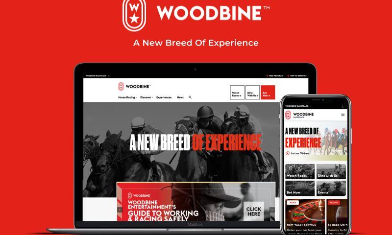 Idea Theorem - Woodbine Corporate Website