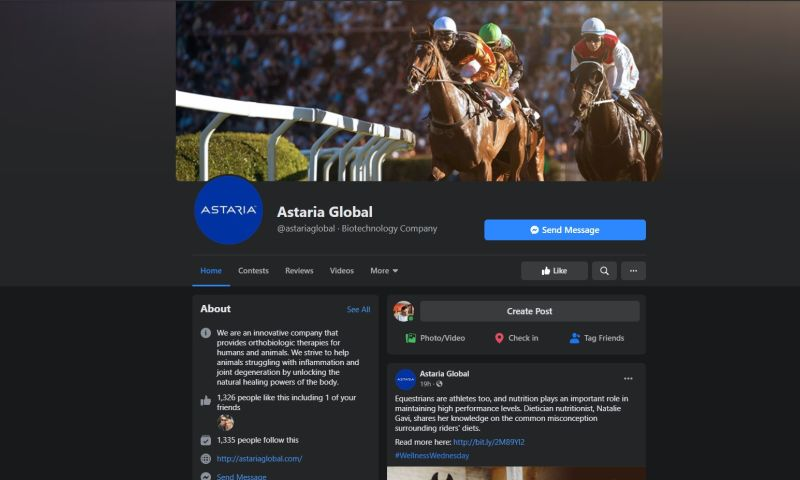Vista 14 - Digital Marketing and Social Media
