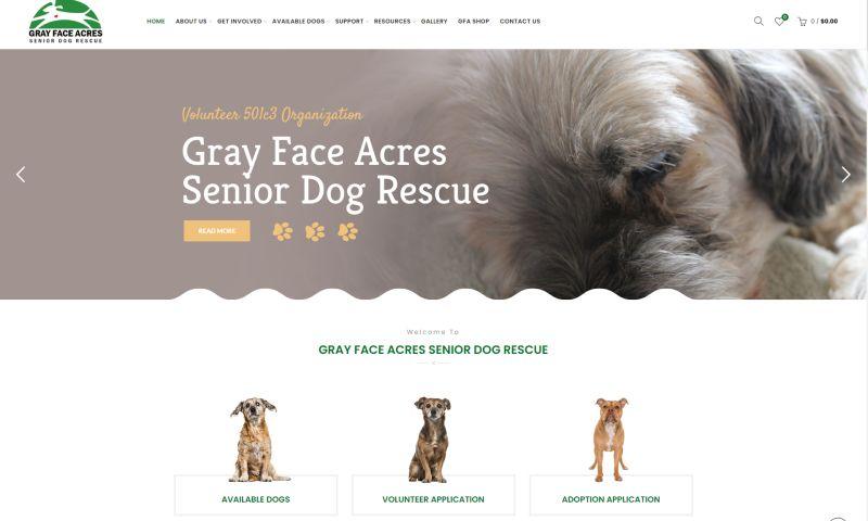 Orange Graphics - Web Design