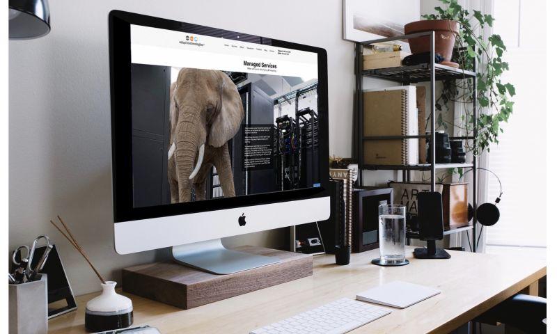 Felice Agency - Rebrand
