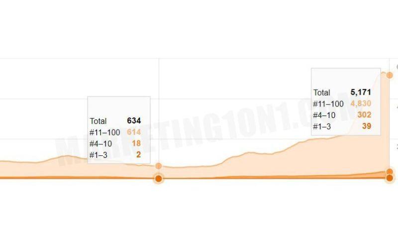 Marketing1on1 - Sports Niche Keyword Growth
