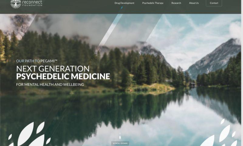 LimeStudio - Reconnect Health