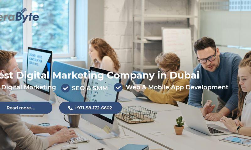 TeraByte - Best Website Development Company In Dubai