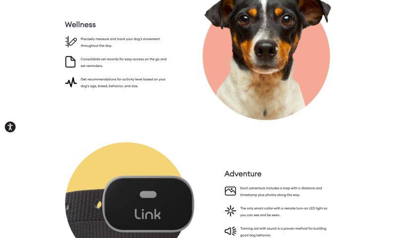 DiscoverTec - Link My Pet