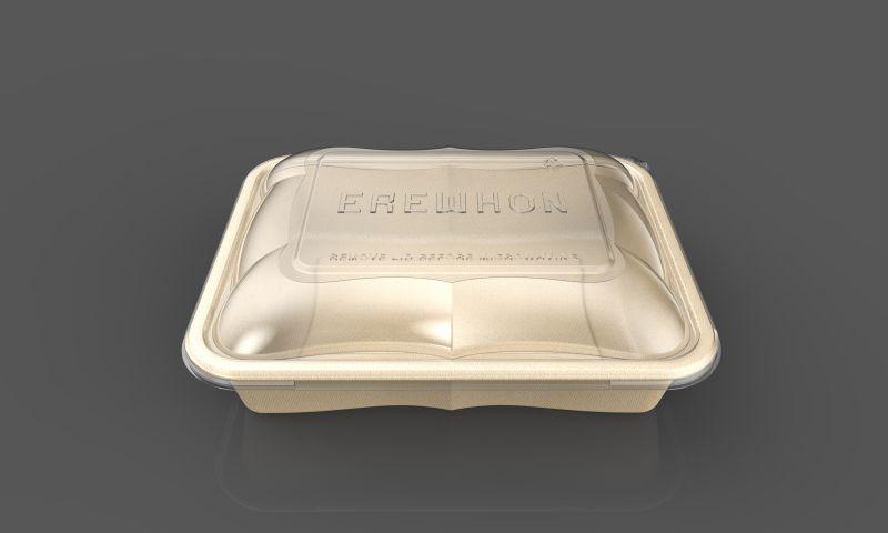 DesignStein Studios - Eco Friendly Disposable Container