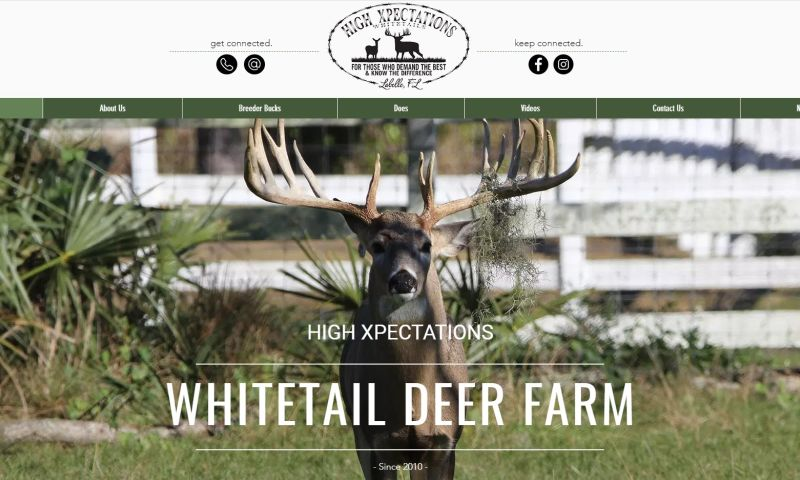 Creative Resource Group - HX Whitetails