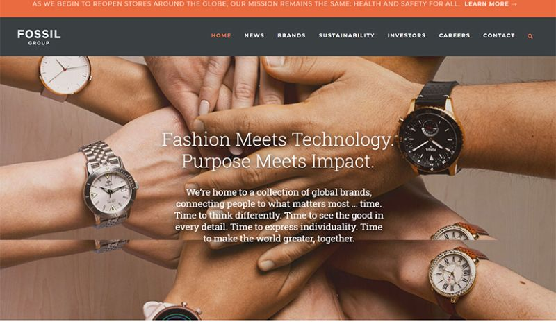 Brainvire Infotech Inc - Fossil Groups