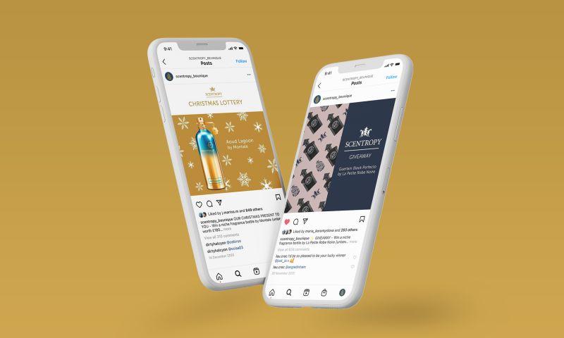 Appetite Creative - Scentropy Website Design & Development