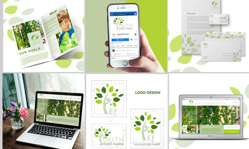 Share Media Agency - YEF Organization Brand Identity