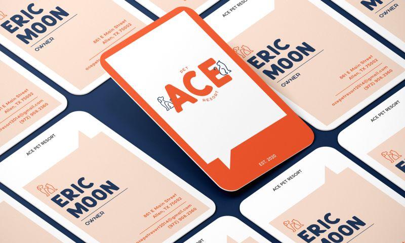 The it Crowd Marketing - ACE Pet Resort