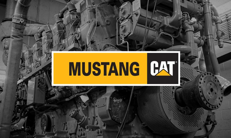 5+8 - Mustang Cat