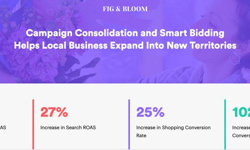 AdVenture Media Group - Creative Smart Bidding Drives a 290% Increase in ROAS
