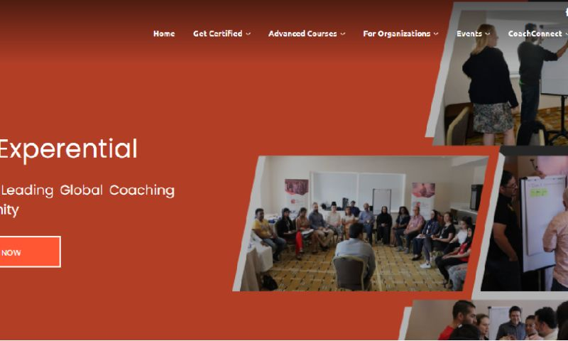 Seotonic Web Solutions Pvt Ltd - Coach Transformation