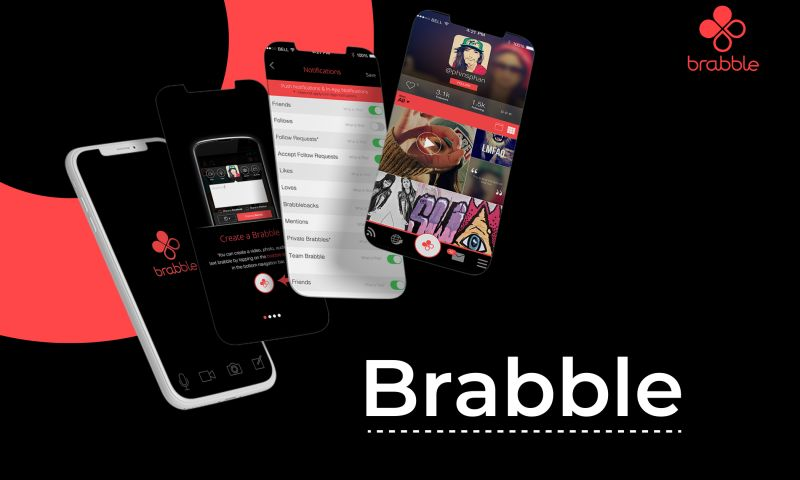 Solution Analysts Inc - Brabble