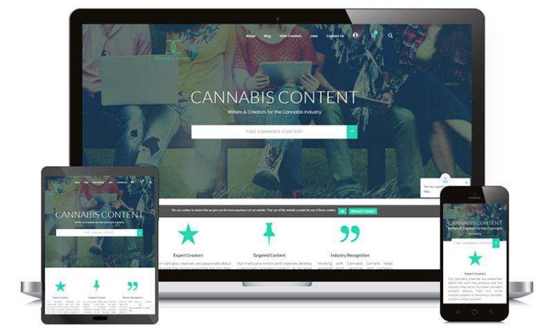WPWeb Infotech - CANNABIS CONTENT