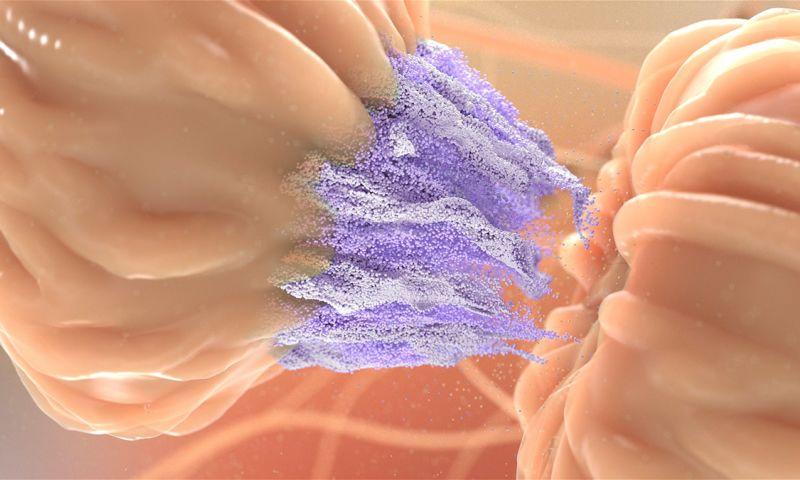 Nanobot Medical Animation Studio - Neuronal Exposure to THC