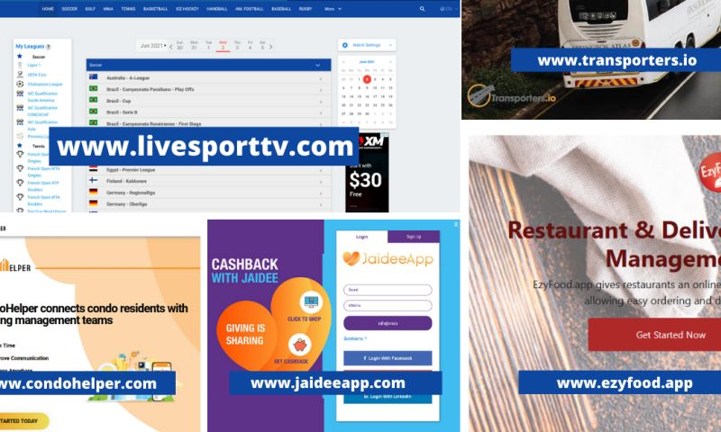 Lion Digital Marketing Ltd - Applications sample portfolio
