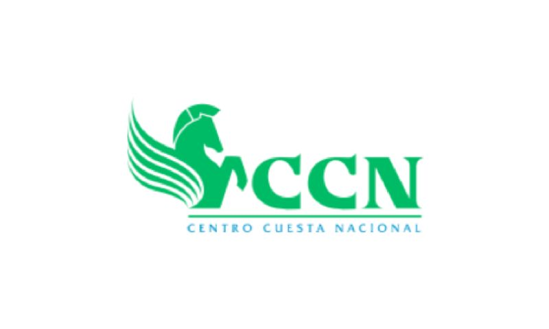 Perception System - CCN - Enterprise eCommerce Website for Retail Giant in Dominican Republic