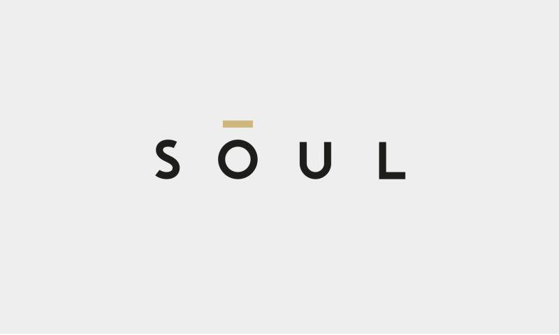Aida Pioneer Group - SOUL