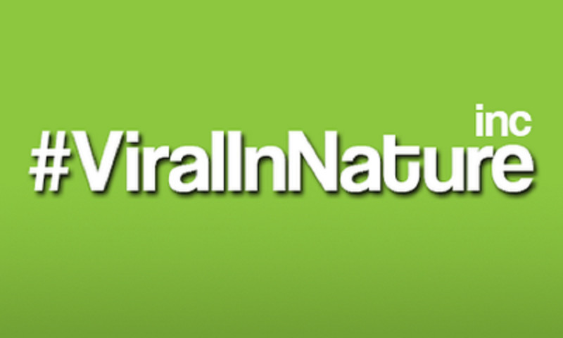 Viral In Nature Inc. - Viral In Nature