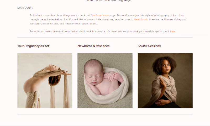 Exnovation Infolabs Pvt Ltd - Designing and developing of a Portrait Photography website