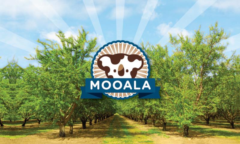 Double Six Design - Mooala Brands