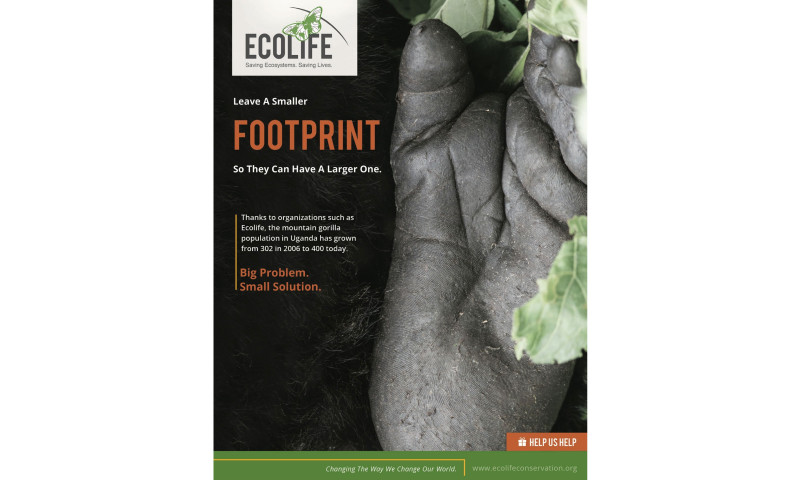 MAD GROUP - Ecolife Branding & Campaign