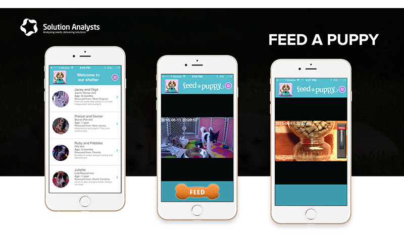 Solution Analysts Inc - Feed a Puppy App