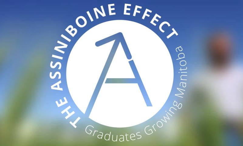 Vibe Creative Group - The Assiniboine Effect