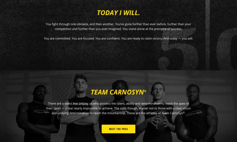 Jacob Tyler - CarnoSyn Campaign Development, Social Media, SEM, Design