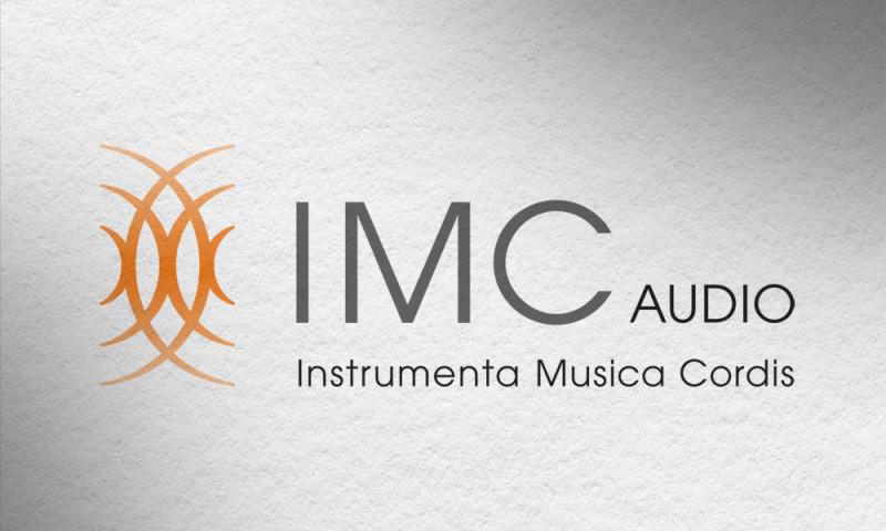 AXIS visual - IMC Logo