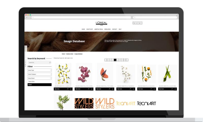 Formulate Digital - L'Oreal Business Plus