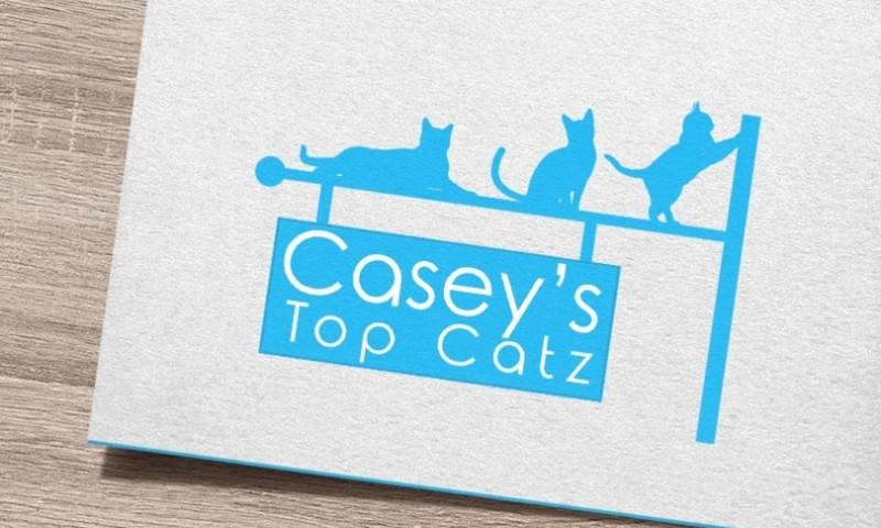 TechUptodate.com.au - Caseys Top Catz