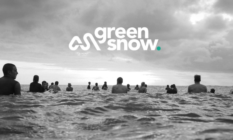 Carswell Gould - Green Snow