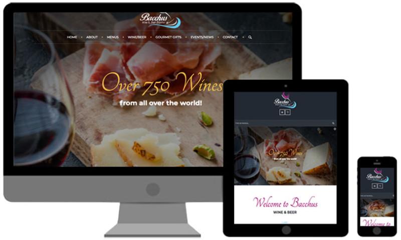 VistaGraphics, Inc - WEB DESIGN & DEVELOPMENT