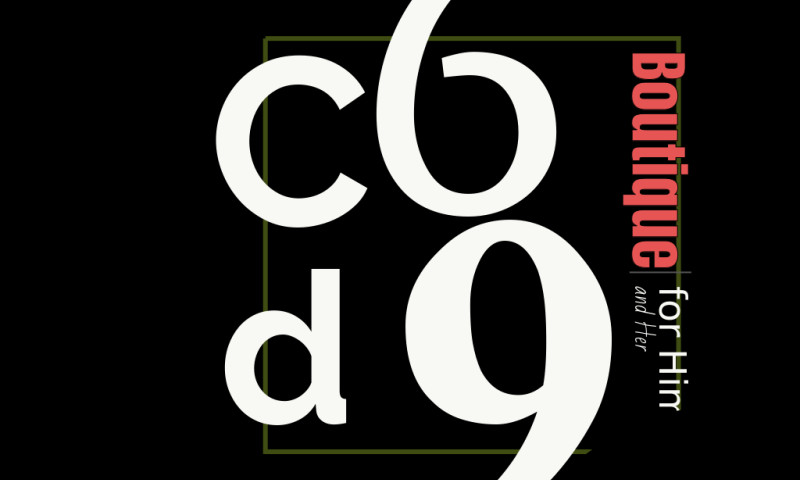 GoDaddy Dave Premier Marketing Agency - C6d9.co from idea to sales