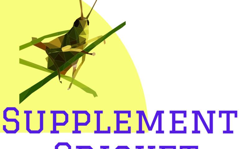 GoDaddy Dave Premier Marketing Agency - Supplement Cricket